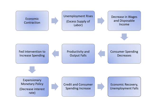 Economic cycle with expansionary monetary policy